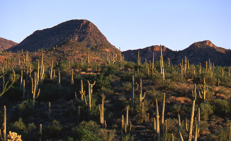 Cave Creek, Spur Cross Mountains