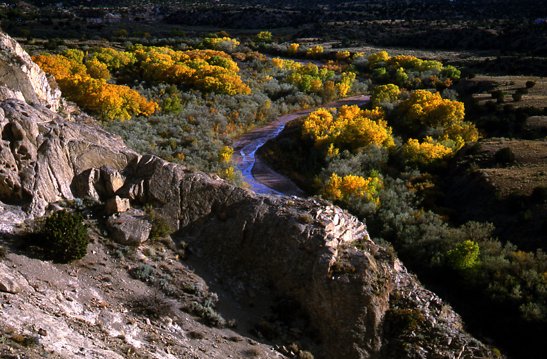 Galisteo Bosque at Sunset